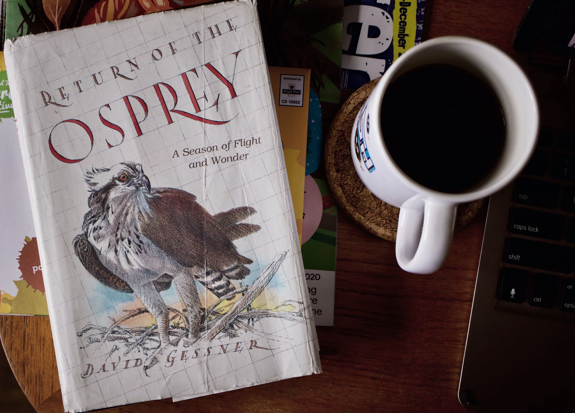 Review: Return of the Osprey by David Gassner